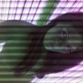 2012/215/13439777942092387163.jpg