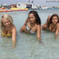 Beach - lacey and friends 1